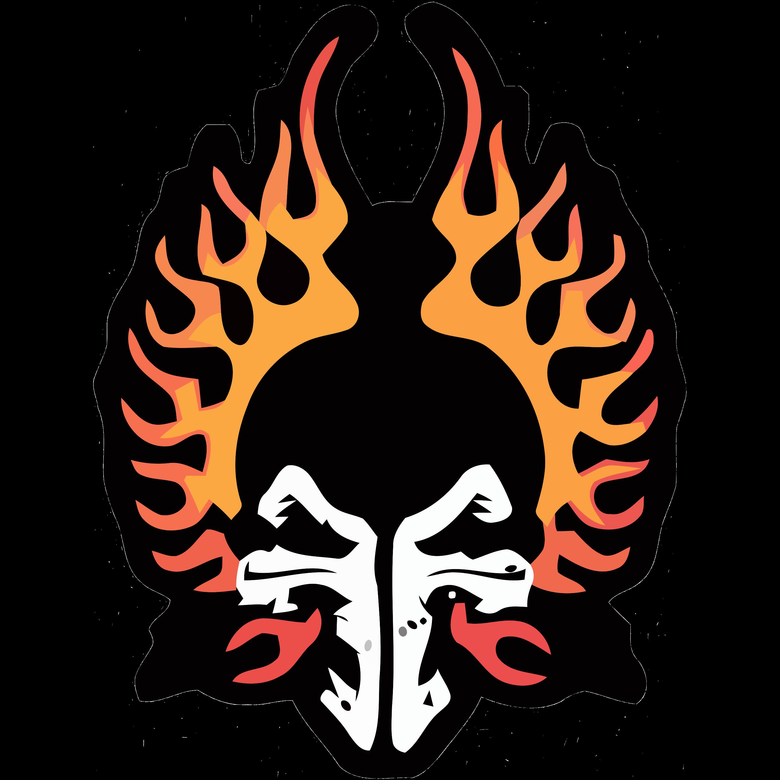 Frankonia Flames 1B