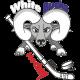 White Bucks 2