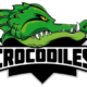 1. EC Senden Crocodiles
